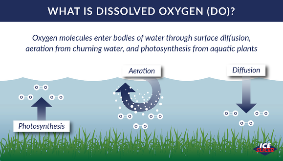 Ice Slicer Graphic showing how oxygen dissolves into water