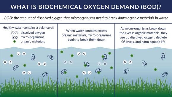 Ice Slicer graphic on biochemical oxygen demand