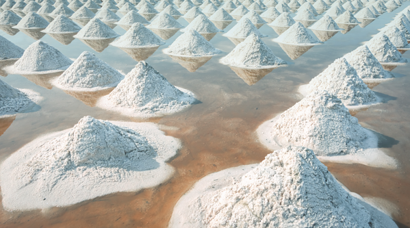 Evaporated salt in a shallow solar pool