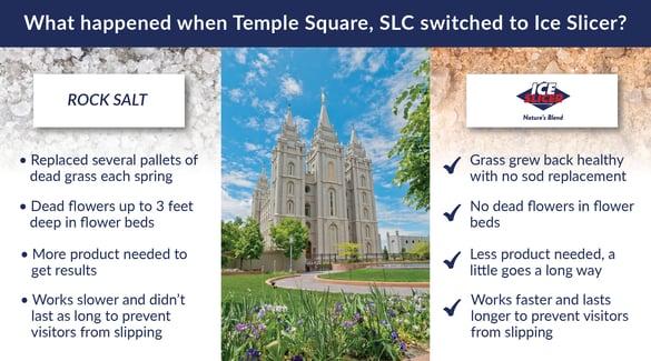 Spring garden-temple square-01