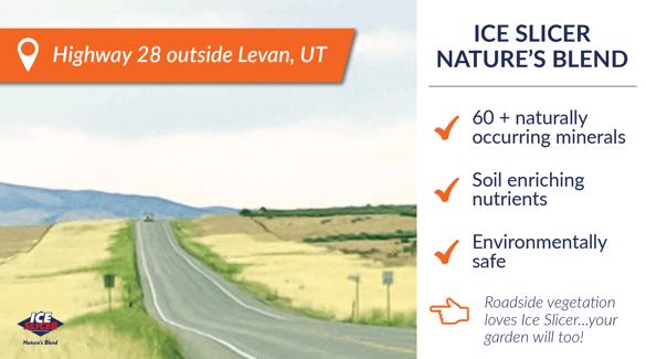 Roadside vegetation loves ice slicer